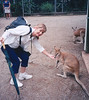 Australia - NZ 2001 : Our Down Under adventure began in January, 2001, beginning in Sydney and finishing in Aukland, New Zealand.